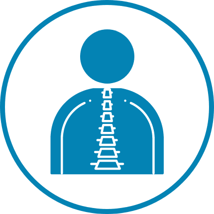 chiropractic spine icon